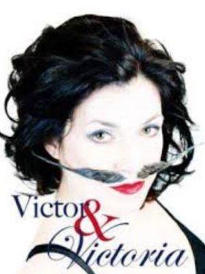 Victor300neu